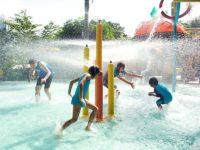 nll-splish-splash